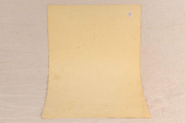 RBNr-23423-6.jpg