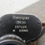 RBNr-P6140106.jpg