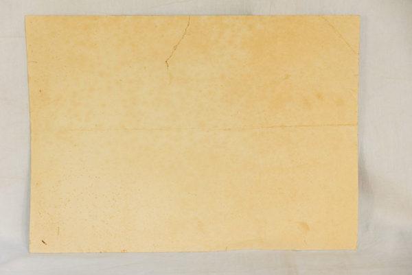 RBNr-30797-5